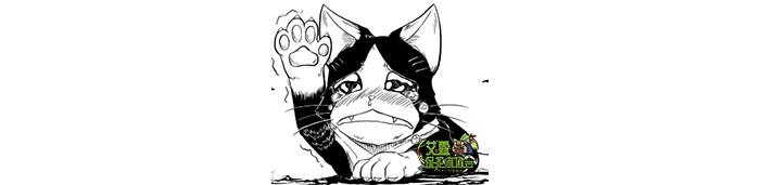 梅拉鲁(1) 怪物猎人OL同人小说
