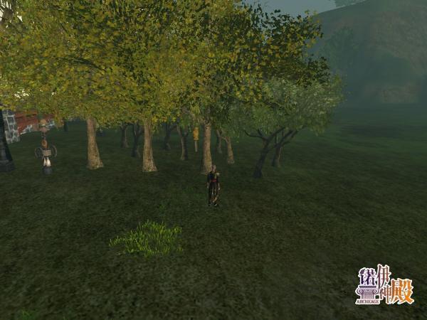 神秘的苹果树树苗z型