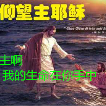 主啊 我的生命在你手中原唱是主内肢体,由有主喜乐翻唱(播放:40)