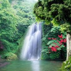 主的爱有多深原唱是主内肢体,由赞美主翻唱(播放:56)