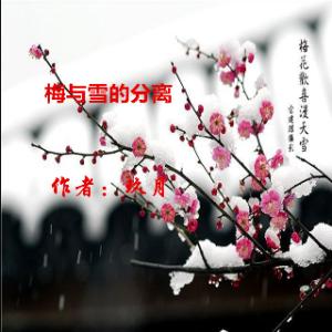 梅与雪的分离【小胡子】由竹影演唱(原唱:小胡子)