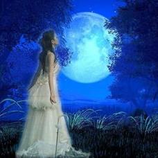 神奇的月光(西.英)由淡积云演唱(原唱:佚名)