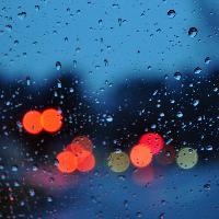 雨原唱是维森特·维多夫罗,由声声漫(欢迎使用朗诵底板)翻唱(播放:111)