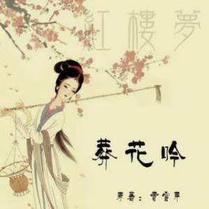 葬花吟由中国口哨~王仲安演唱(原唱:陈力)