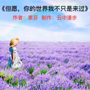 《但愿,你的世界我不只是来过》(热度:30)由梦海之恋翻唱,原唱歌手云中漫步