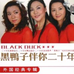 红河谷(热度:90)由绿豆翻唱,原唱歌手黑鸭子