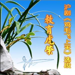 在线听教育虎荣  沪剧《鸡毛飞上天》(原唱是沪剧),天空演唱点播:378次