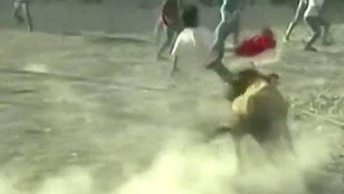 秘鲁斗牛活动发生意外 公牛顶飞斗牛士后又袭击看台