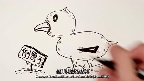 人类首次在琥珀中发现雏鸟化石