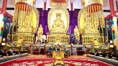 居士采访:我之前的学佛全错了原来这才是佛法