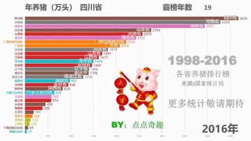 全国各省 总计19年,养猪数量统计
