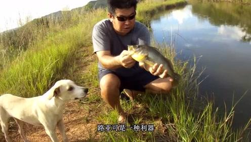 葡萄牙小哥自制鱼饵,小鱼做得太逼真了,能反复用,下钩就上鱼!