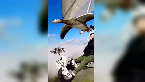 小哥体验高空飞翔,徒手制作的高科技让人叹服