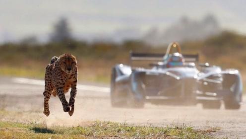 谁是真正的速度大佬?F1赛车踩足油门都败给了他