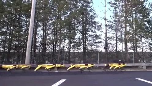 厉害了!这些机器人竟能拉走大货车