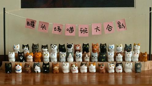 手工DIY60只猫咪,拍出的猫咪合照太萌啦