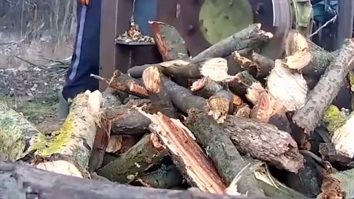 科技探秘:国外的劈柴机还真是发达,感觉多少木头都不够劈