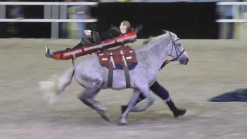 马术表演上马突然受惊怎么办?外国人的反应太逗了