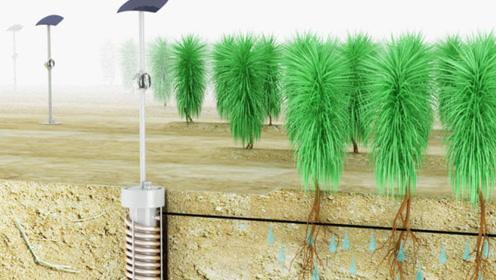 在沙漠中空气取水,吸取水蒸气提供灌溉,一天收集一公升