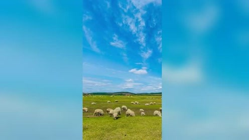 广阔的草原,蓝蓝的天