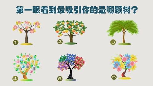 这张图中有6棵树,你第一眼看到的是哪一棵?这将决定你的性格