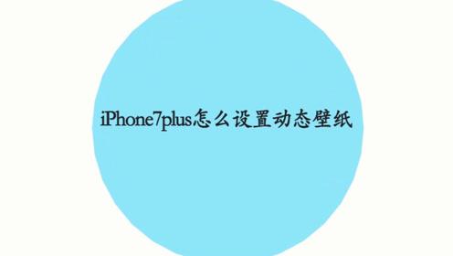 iphone7怎么设置壁纸