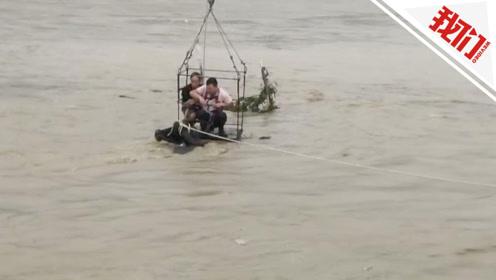 """水牛被困河中:牛主人""""吊""""在湍急河水中 用镰刀割断牛绳救援"""