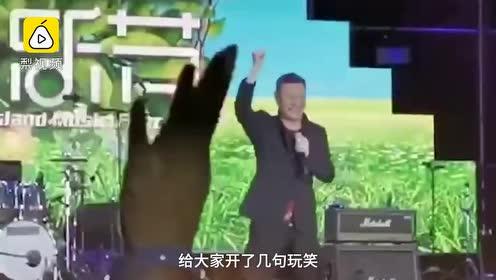 韩磊舞台上被绊倒,顺势后空翻化解尴尬