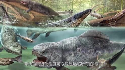 亿年前的百兽之王,鲨鱼在它面前都是弱者,鲸鱼更是没有一席之地
