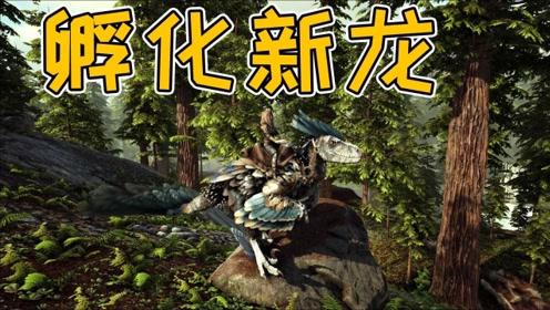 方舟瓦尔盖罗:终于孵化新恐龙,下一秒就剩盒子?发现最稀有的马图片