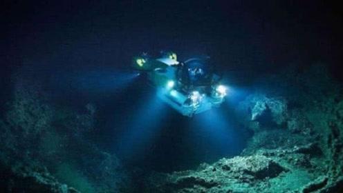 海底一万米到底有多可怕?在8200米的深度,已经没有鱼类生存