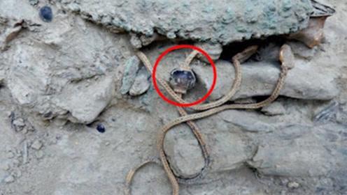 老人上山挖笋,发现了一条龙,考古家:快报警