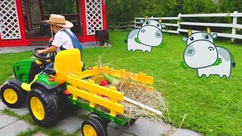 萌娃给农场里的奶牛送草料,小家伙真是萌萌哒!