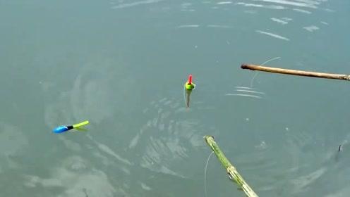 看到他们这样钓鱼,仿佛回到小时候,粗线大鱼钩钓大鱼