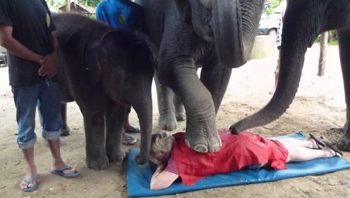 泰国最刺激的服务,大象用脚为游客按摩