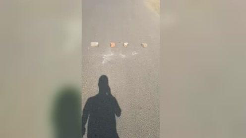在公路上晒粮食就算了,竟然还用砖头挡路,什么素质!