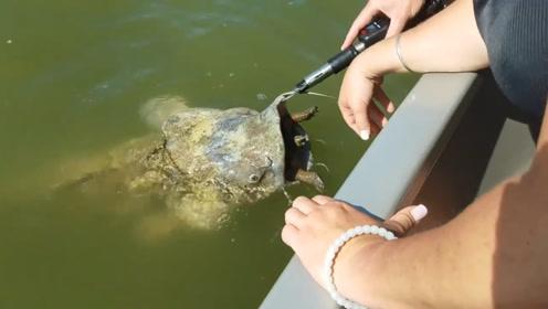 抓住一条大鲶鱼,正准备拉上来时,才发现鱼嘴有些不对劲