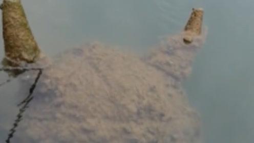 洛阳河道发现神秘物体,网友猜测是面具,但外形却像喜羊羊