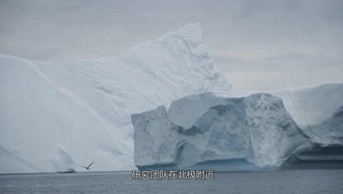 科学家钻探北极冰山,发现人类罪证,曾是地球最纯洁的地方