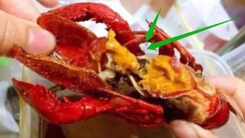 """小龙虾脑壳里的东西,到底是""""虾黄""""还是""""屎""""?很多人都吃错了"""