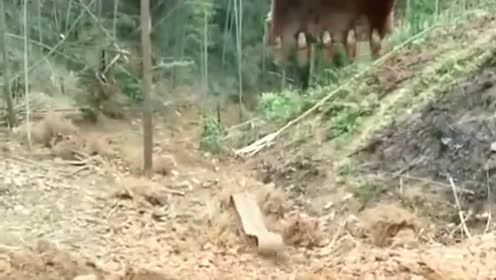 挖掘机司机怎么也没想到,车轮会自己跑掉了,简直太不可思议了!