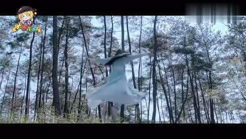 《陈情令》蓝忘机就是行走的全能机!太好笑了!