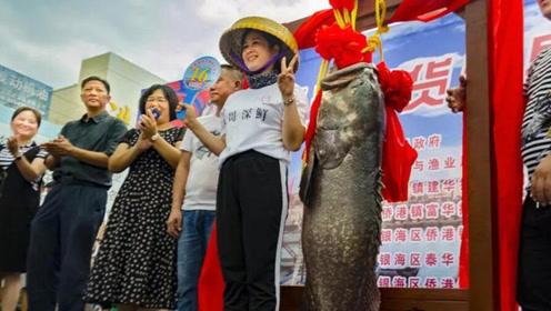 """北海""""鱼王""""拍出708888元高价 将近4000元1斤"""
