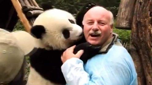 外国租借大熊猫,听到国宝价格,老外:这是拿卖萌赚航母啊!