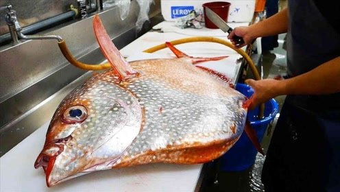 为何这鱼生下来就被日本人惦记?切开那一刻,瞬间明白了