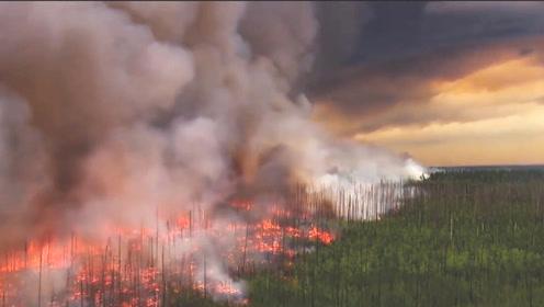 亚马逊雨林持续燃烧会产生多大的危害?答案让人心急如焚
