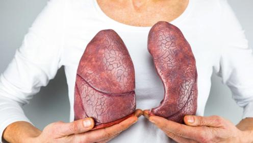 医生忠言:1个穴位,教你秋季养好肺,不再便秘