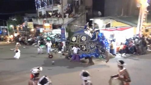 斯里兰卡庆典2头大象失控冲撞人群,至少18人受伤