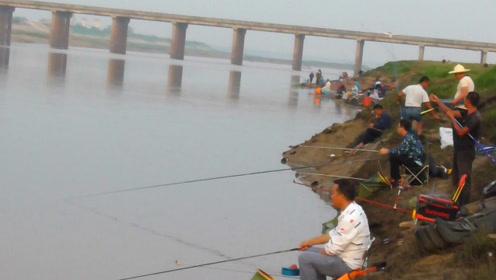 这河流每天上百人作钓,鱼真有这么多?看钓友这鱼获真没骗人!