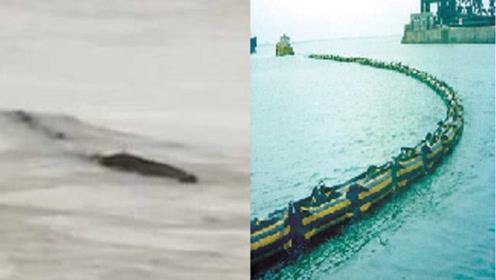 """""""三峡水怪""""事发地疑为安徽池州一码头,""""水怪""""或为围油栏"""